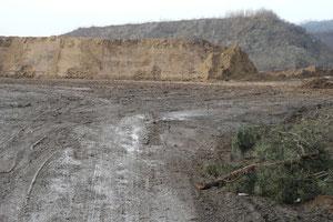 Nordring/Landesgrenze 06.02.2009