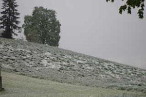 Schneegestöber am 25. Mai 2013