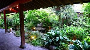 アプローチ 庭・池
