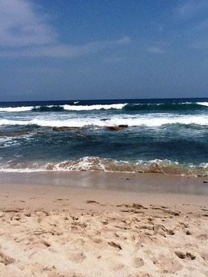 この日は、波が荒かった。