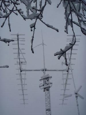 la prima neve... che brivido!