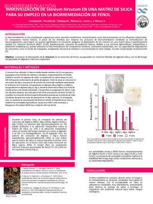 Inmovilización de Stereum hirsutum en una matriz de sílica para su empleo en la biorremediación de fenol