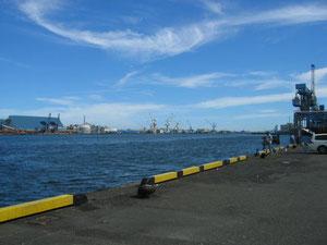 江尻埠頭の南隅、ここも案外いいポイントでいつも釣り人がいます。