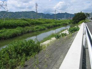 下のほうにくると川が広くなってきます。