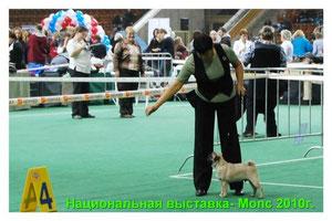 Ласти Гранат- класс бэбиков
