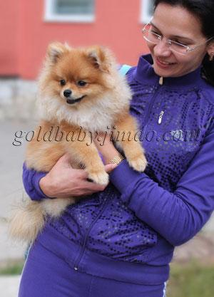 щенок карликового немецкого шпица от Касиопеи Лукреции (Кисы) и Ерохи