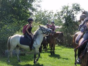 Randonnée equestre avec l'étrier de sainte-Catherine d'Hirson ; halte d'une nuit au gîte du cheval de renfort de OHIS, Aisne.