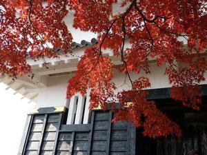 やっと、お城入り口に着きました・・・、紅葉が迎えてくれます