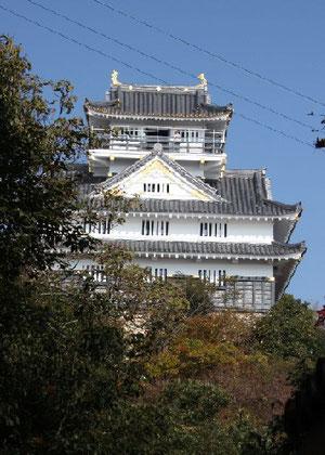 ロープウェイ山頂駅から岐阜城までは、きつい山道・・・登りは階段が200段あったそうです