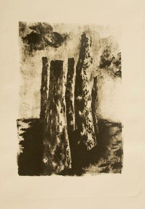 Litografía, grabado,aguada litográfica, manera negra litográfica.