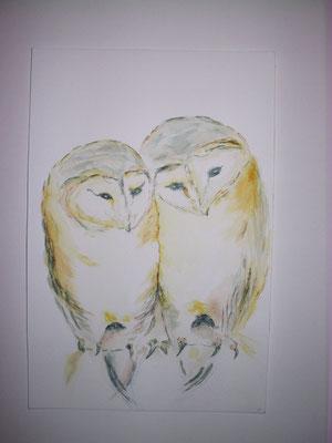 Eulenpaar