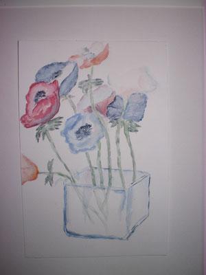 Mohhnblumen