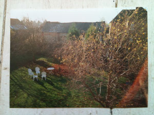 Pillar House Garden in Autumn 1980s