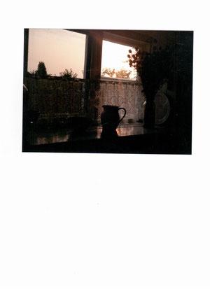 Larder window