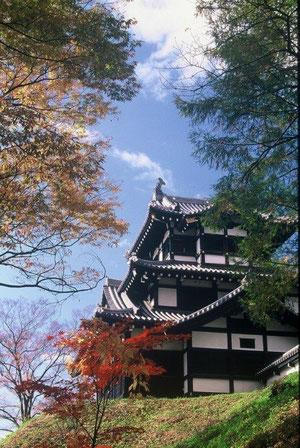 秋晴れ  紅葉に映える高田城