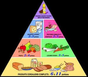 La pyramide alimentaire : une question de proportions