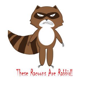 Rabbid Racoon