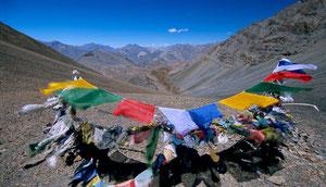 Einsames Trekking in Zanskar von Phuktal über den Morang La