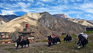 Dagala Trekking in Bhutan, 1000 lakes