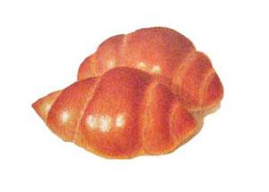 色鉛筆画 パンの画像