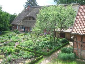 Blick in den Garten und zum Reetdach-Haupthaus.
