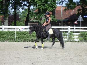 Hrimnirs erste Schritte Mai 2011