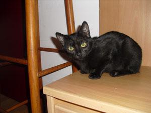 Malia (7 mois)