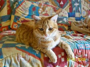 Nessy, 7 mois
