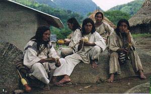 Die Mamos von Tungueka: Kokablätter kauen und die spirituellen Kräfte konzentrieren