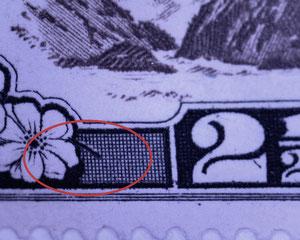 'Stalk on flower', R1/1.