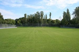 Der neue Naturrasenplatz (Eröffnung 24.05.2013)