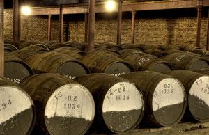 Speyside, Whisky, Whisky-Pur-Tour, Whiskytour
