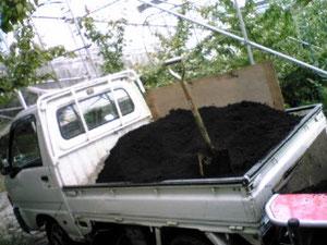 さくらんぼ狩りフルーツ狩り大沢農園堆肥
