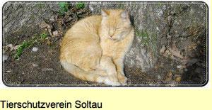 Tierschutzverein Soltau