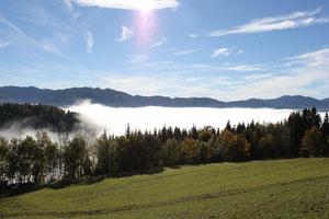 über der Nebelgrenze...