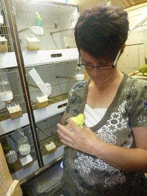 Hier hat sich jemand in mein gelbes Scheckenküken verliebt :-) aber er ist auch super zahm und hat einen super Charakter wie seine zah´me Mama Marie