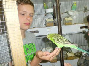 Kevin und Achmed