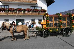 Das Pferdegespann