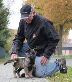 Ixy vom Haus Ehrlich 10.11.2012