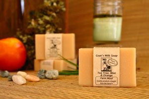 Goats Milk Soap ~ Tea Tree Mint & Orange