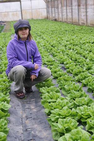 Anna im Salat