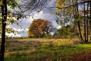 Sur-le-Beau : un site à préserver