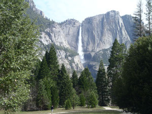 We spent 4 days in Yosemite National Park