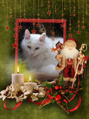 Flöckchen wünscht Fröhliche Weihnacht