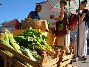 Kundinnen und Buntgemüse am Frischemarkt