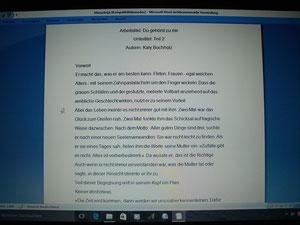 Computerbildschirm mit einem Manuskriptauschnitt der Delmenhorster Schriftstellerin Katy Buchholz