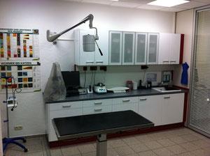 Tierarztpraxis Ginsheim Gustavsburg