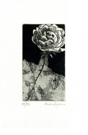 incisione originale di Luciano Ragozzino (misura lastra 105x60 mm)