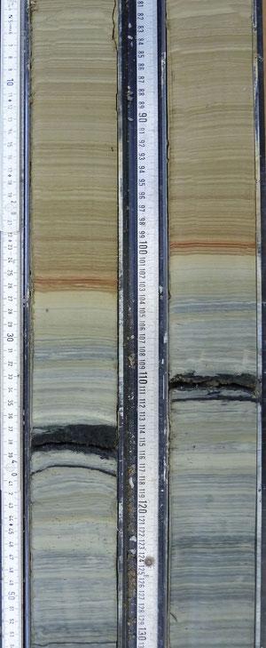 Abb. 2. Zwei Parallel-Kerne vom 'Ahlat Ridge' aus dem letzten Glazial (blaugraue Sedimente). Eingeschaltet sind rotbraune, gewarvte Sedimente eines Interstadials. Die schwarzen Sedimente sind vulkanische Aschen Foto: G. Heumann