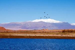 Pour en savoir plus sur le lac de Ouarzazate